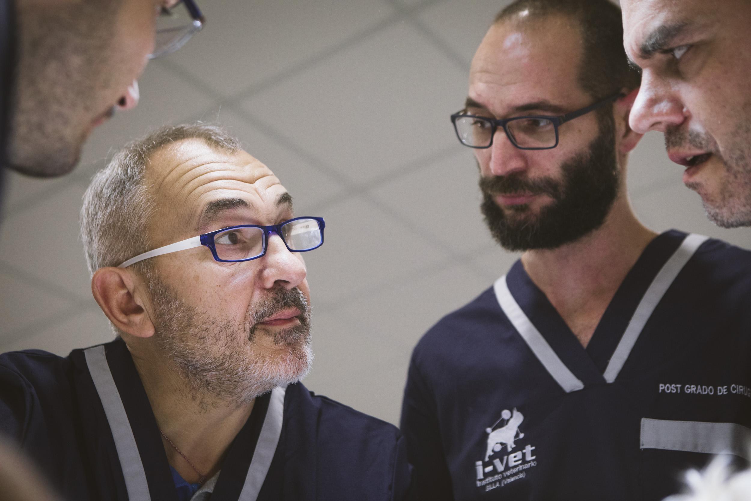 Stefano Nicoli se une al equipo de cirugía de tejidos blandos en el Hospital Veterinario Valencia Sur