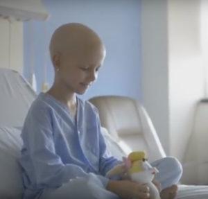 Los perros de los trabajadores del Hospital La Fe entretienen a los niños con cáncer