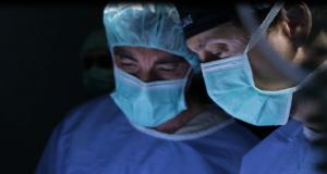 hospital veterinario caso de amada carcinoma 1