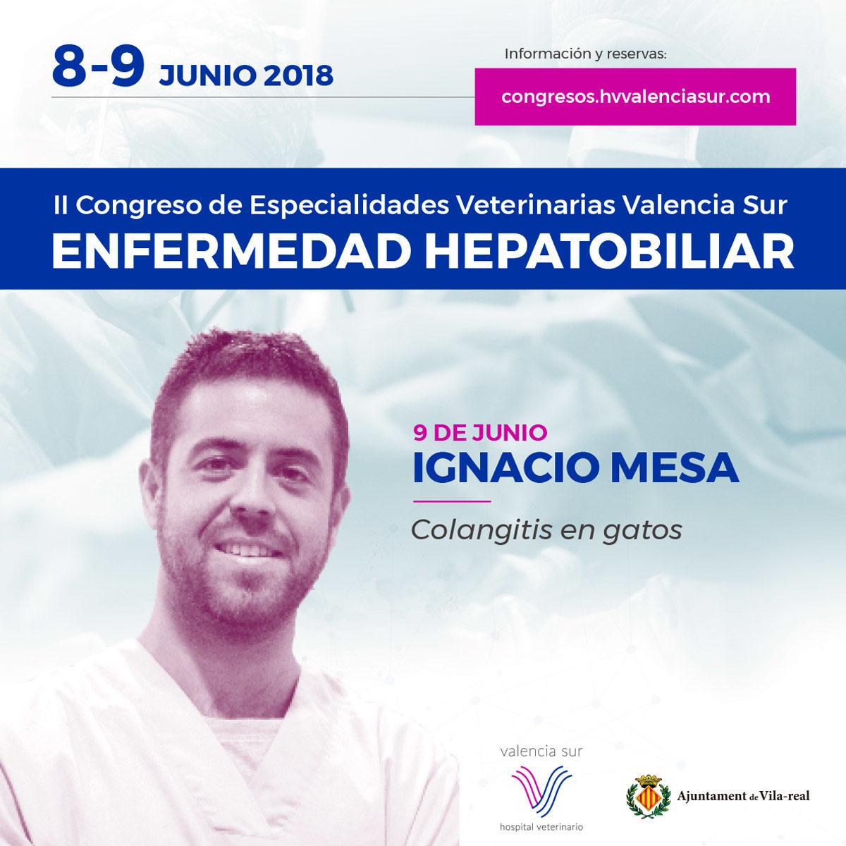 02Ponentes CongresoValenciaSur