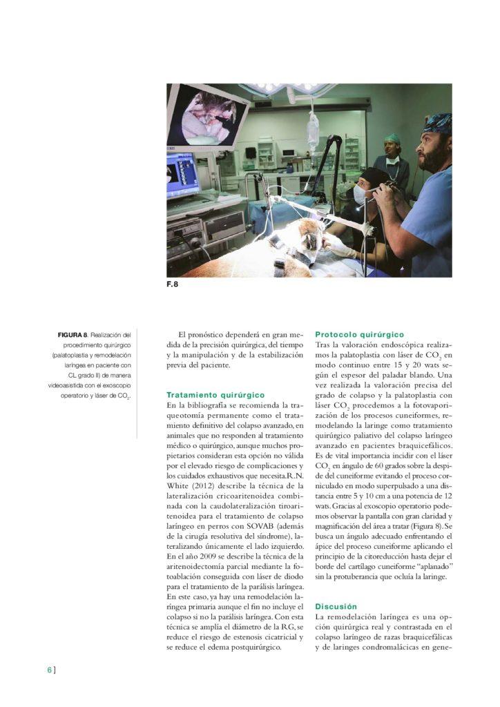 articulo revista Colapso laringeo y CO2 005