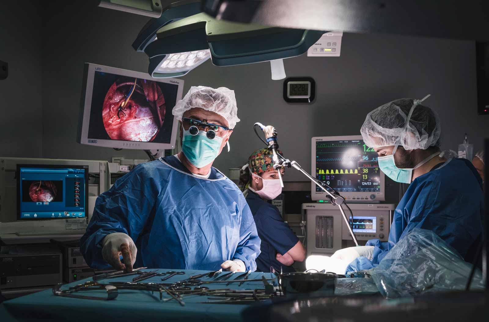 Anicura Hospital Veterinario Valencia Sur Servicio Cirugia veterinaria
