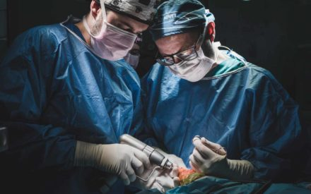 Anicura Hospital Veterinario Valencia Sur Servicio Traumatologia