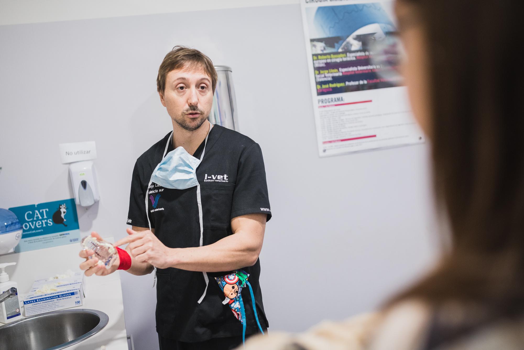 Especialista Veterinario - paralisis laringea