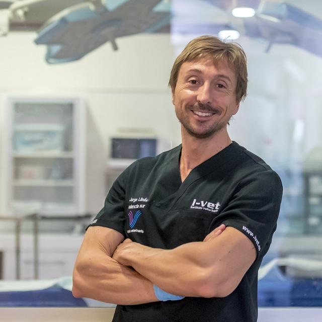 Jorge Llinás - Hospital Veterinario Valencia Sur