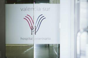 opinion hospital veterinario valencia sur