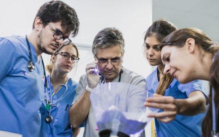 web neurologia veterinaria valencia sur