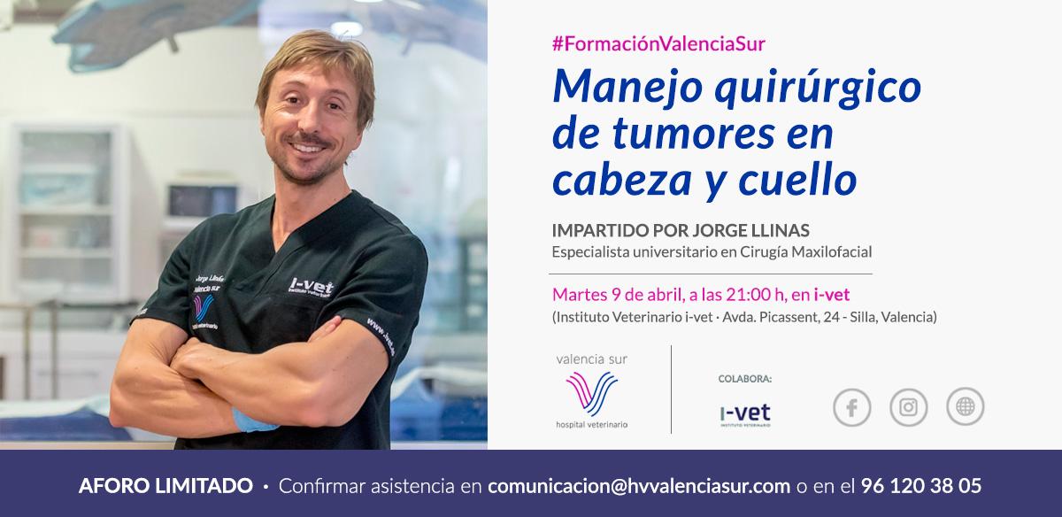 Formacion Valencia Sur- Jorge Llinas - Director Hospital Veterinario Valencia Sur