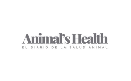 animals health valencia sur