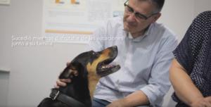 cirugia perro carcinoma cavidad nasal