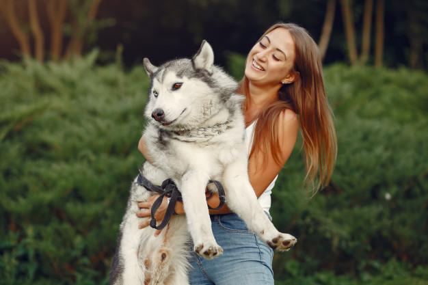 perro y pulgas