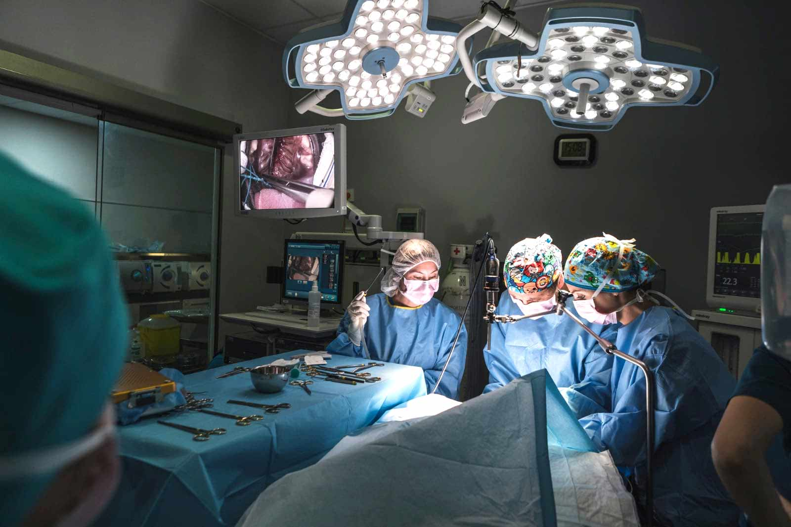 Anicura Hospital Valencia Sur Urgencias veterinarias 24 horas durante los 365 dias del anyo