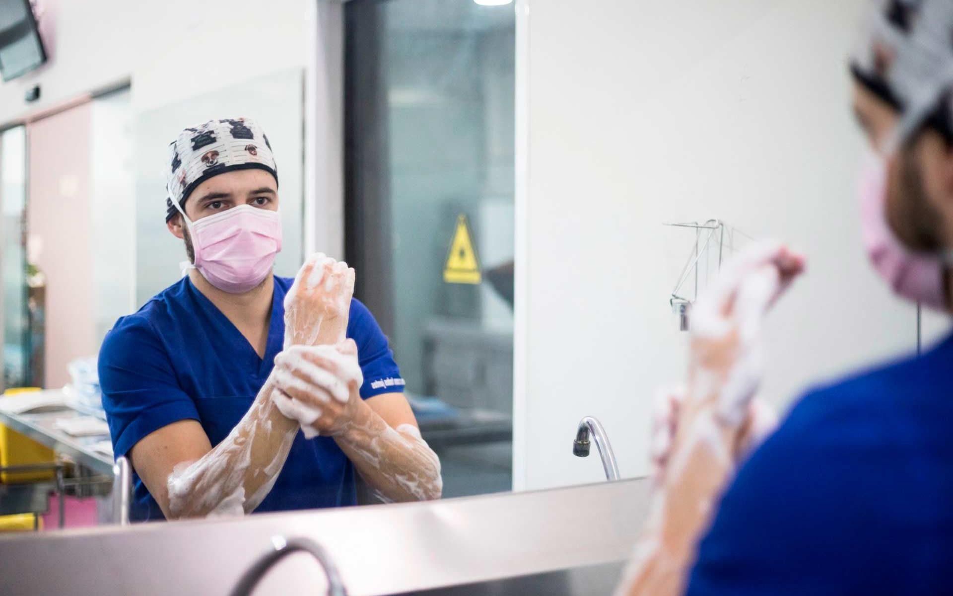 Hospital Veterinario Valencia Sur última información sobre coronavirus en mascotas en Españaa