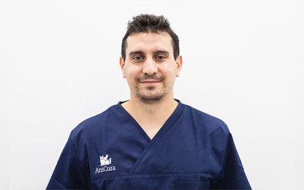 Luis diaz diagnostico imagen anicura valencia sur